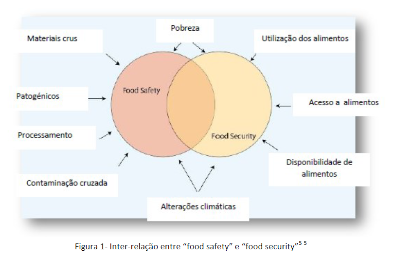 segurança-alimentar-food-safety-security-saude-publica-sst-safemed